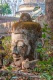Head Buddha staty i Wat Umong Arkivbild