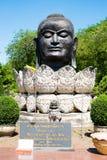 Head Buddha Thailand Ayuthaya Arkivbild