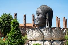Head Buddha Thailand Ayuthaya Arkivbilder
