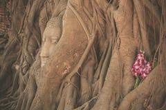 Head of Buddha at Wat Mahathat Stock Photography