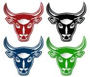 Head of Bull Stock Photography