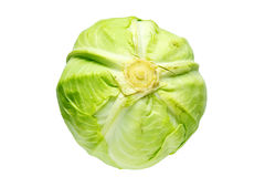 Head of cabbage Stock Photo