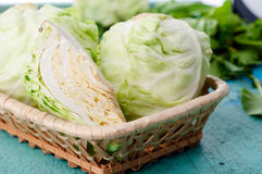 Head of cabbage Stock Images