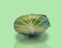 Head of cabbage. Stock Images