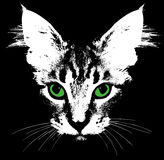 Head of a cat with green eyes. Vector Stock Image