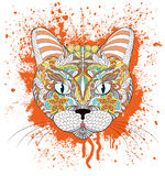 head of cat on grunge splash Stock Photo
