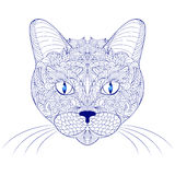 Head of cat on white background Stock Photos