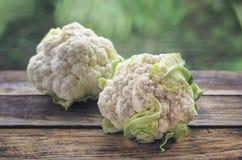Head of cauliflower closeup royalty free stock photo