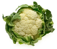 Head of cauliflower Royalty Free Stock Photo