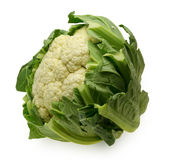 Head of cauliflower Royalty Free Stock Image