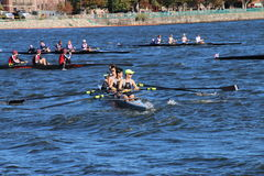 Head of the Charles Regatta 2016 Stock Photography