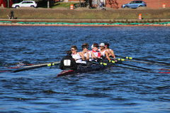 Head of the Charles Regatta 2016 Stock Images