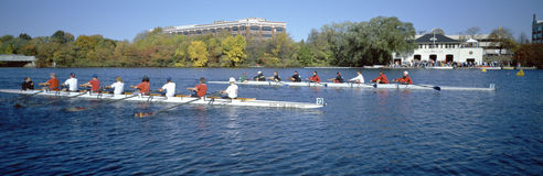 Head of the Charles Rowing Festival, Stock Image