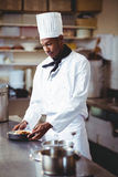 Head chef presenting a salad. In commercial kitchen Royalty Free Stock Photos