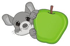 Head of chinchilla with food Stock Images