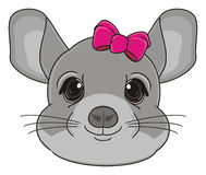 Head of chinchilla Stock Photography