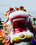 Head Of Chinese Dragon Mouth Outdoors Parade Stock Photos