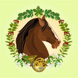 The head dark brown horse hunting theme vector Stock Photo