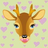 Head of the deer Stock Image