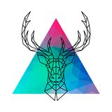 Head of a deer with horns in geometric style against a multicolored triangle. Vector illustration Royalty Free Stock Photos