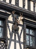 The head of a deer on the wall of the house located near Pelesh castle in Sinaia, in Romania stock photos