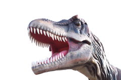 A head of a dinosaur Stock Photos