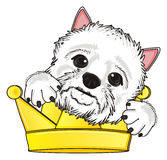 Head of dog with crown Royalty Free Stock Photography