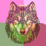 The head of the dog, drawn by smooth lines.  royalty free stock photography