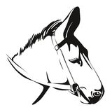 Head of Donkey. vector drawing Stock Image
