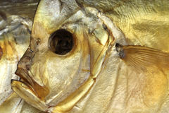 Head dried fish Vomero Stock Photo