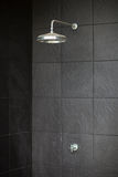 Head dusch Arkivfoton