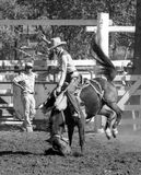 Head in the dust. KINGAROY, AUSTRALIA, CIRCA 1980: Unidentified contestant rides a bucking bronco during a small town rodeo, circa 1980 in Kingaroy, Australia Stock Photography