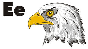 Head of eagle and abc Royalty Free Stock Image