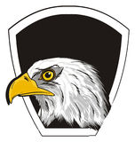 Head of eagle and clean icon. Bald eagle peek up from black and white and empty banner Royalty Free Stock Photos