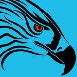 Head of eagle over blue Stock Photos