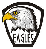 Head of eagle peek up from banner. Bald eagle stick out from black and white icon with black words eagles Stock Photography