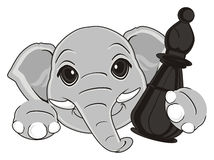 Head of elephant and chess Stock Images