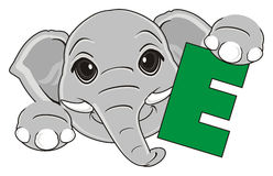 Head of elephant with green symbol. Muzzle of elephant with letter E on his paws Stock Photos