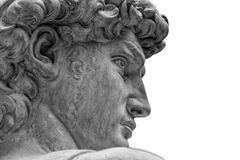 Head of a famous statue by Michelangelo - David from Florence, isolated on white.  royalty free stock photography