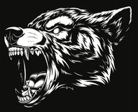 Head of the ferocious wolf. Vector illustration head ferocious wolf, outline silhouette on a black background Stock Image