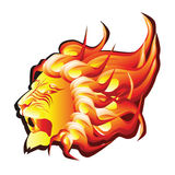 Head of fire lion Royalty Free Stock Images
