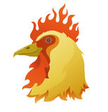 Head of a flamy rooster Royalty Free Stock Photography