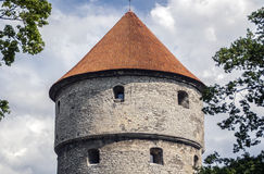 The head of fortress tower. In old town of Tallin, Estonia Royalty Free Stock Photography