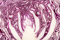 Head of fresh, delicious purple cabbage Royalty Free Stock Photos