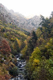 Head of the Fresser river in autumn. The Fresser, an important Catalan river, born in the eastern Pyrenees, apocas hours walking the bridge where this picture Royalty Free Stock Photos