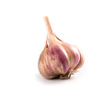 Head of garlic Royalty Free Stock Photos