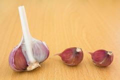 Head and garlic cloves on the background of a wooden table royalty free stock photography