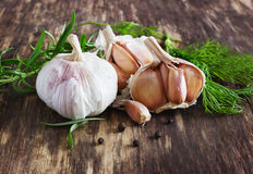 Head of garlic and herbs Royalty Free Stock Photos