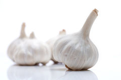 Head of garlic isolated on white Stock Image