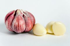 The head of garlic and lobules. Healthy eating stock photo